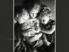 jtp_2013-baby-1007