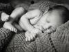 jtp_2013-newborn-1027
